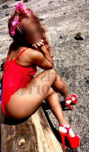 Wafia escort in Temple Terrace